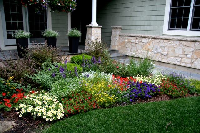 the picture above shows an update of our front garden bed the plants