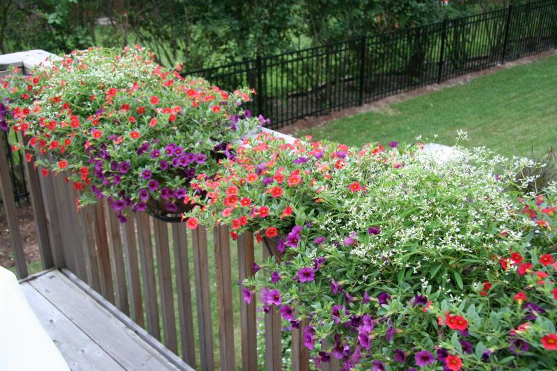 nana diana takes a break flowers in deck planter boxes. Black Bedroom Furniture Sets. Home Design Ideas