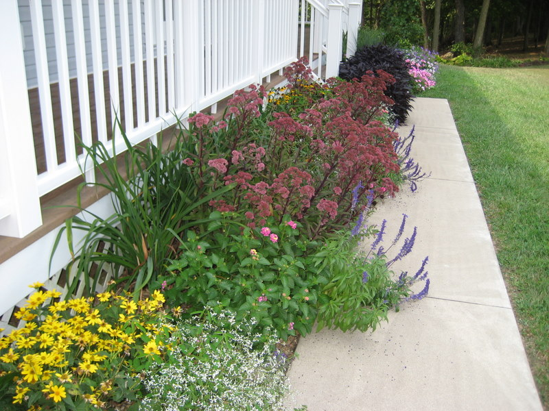 Small perennial flower bed ideas car interior design for Flower bed arrangements