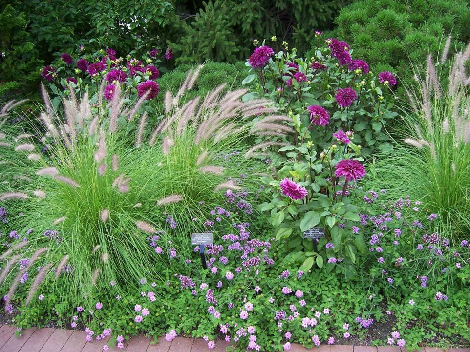 Bright Colors To Expand The Palette Of Plant Material While Maintaining Mood You Are Creating Here Two Examples Gardens Using Dark